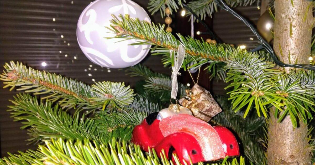 Wesołych Świąt Bożego Narodzenia życzy Zespół Auto Ars